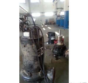 进口ABS潜污泵网投万博体育、更换轴承、制作更换密封